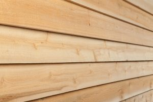 Stain or paint on cedar siding
