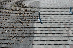 soft washing an asphalt roof